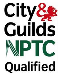 Tree Surgeon in Canterbury, City of guilds Qualified